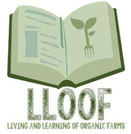 lloof_logo